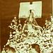 primera salida procesional 1955