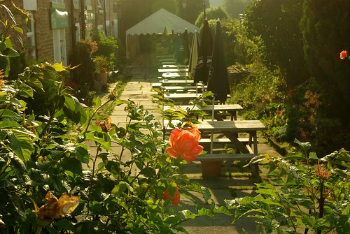 20130807-27_Roses and beer terrace - Navigation Inn - Bugsworth Basin - Buxworth by gary.hadden