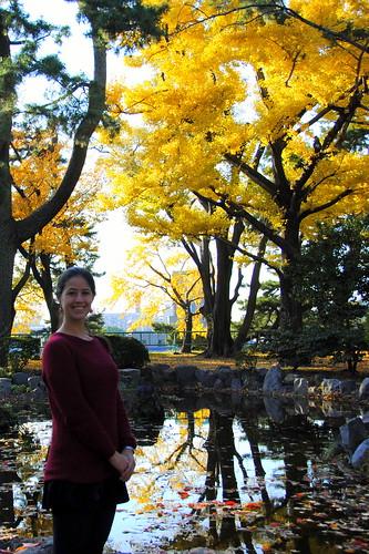 Fall Nagoyajo 160r
