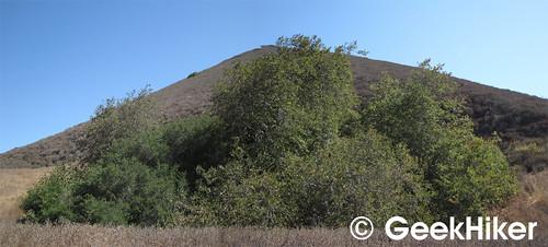 Islay Hill 05