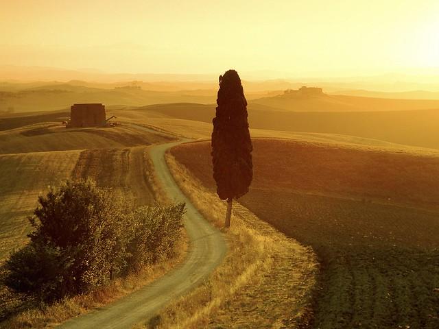 bdk_tuscanromance