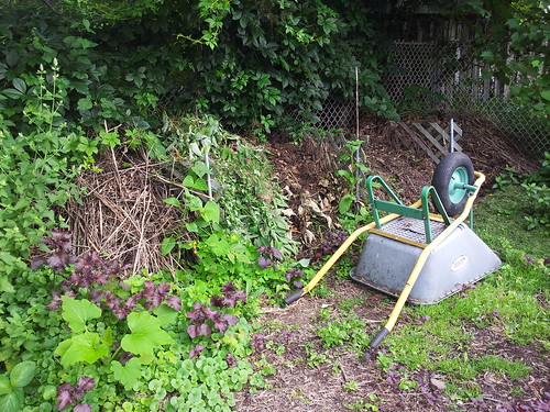 Compost full and growing