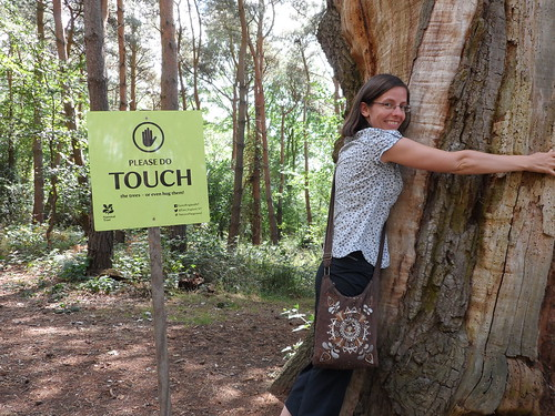 mama hugs tree
