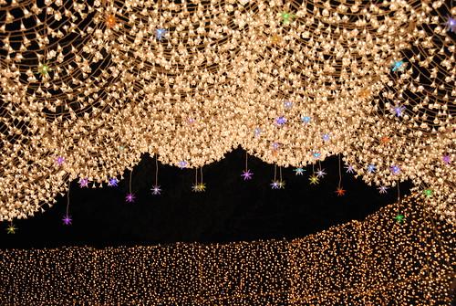 Nabana Winter Lights 055