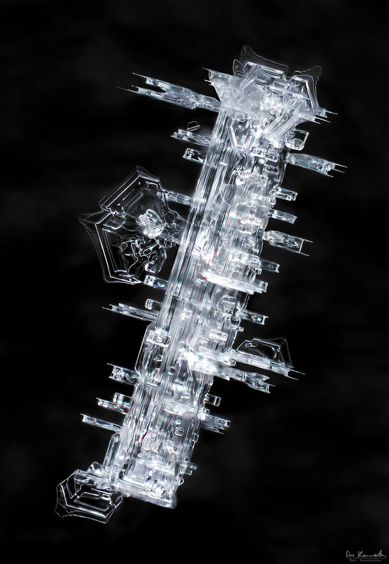 Beyond imagination, snowflake macro photo by Don Komarechka