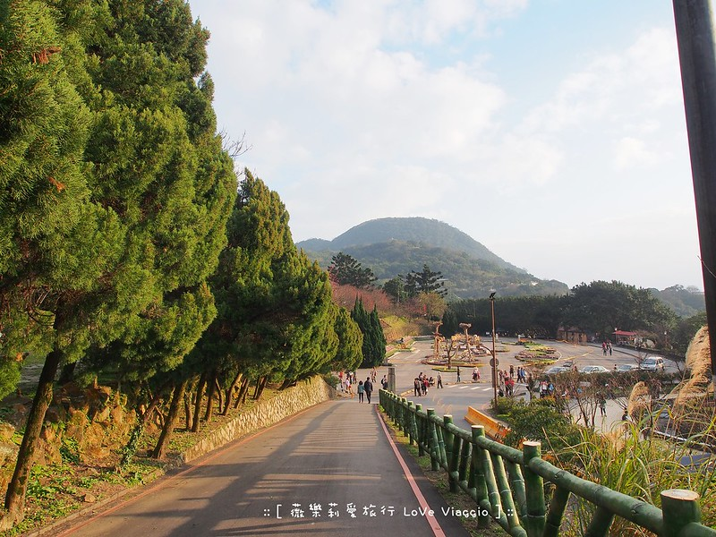 台北景點,花季 @薇樂莉 Love Viaggio   旅行.生活.攝影
