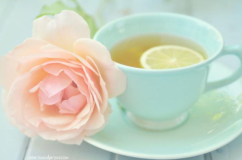 tea_rose_pastel_web
