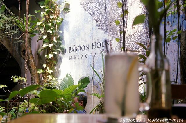 8.baboon house (16)_