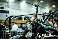 ROT Warrior MMA - June 15, 2013