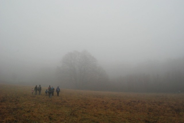 3-foggy hike