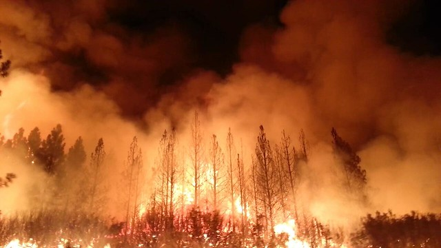 The Rim Fire in the Stanislaus National Forest