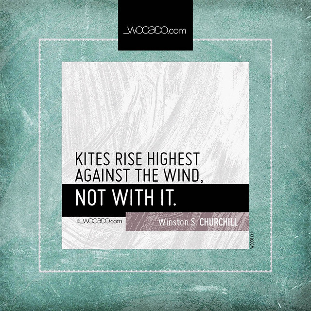 Kites rise highest against the wind by WOCADO.com