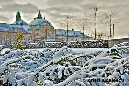 Winter GOP by cristiniculescu