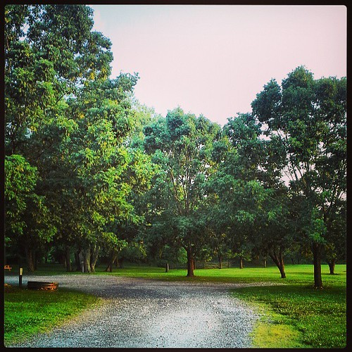 Road to Chadds Ford historic society