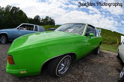 apple green regal (1)