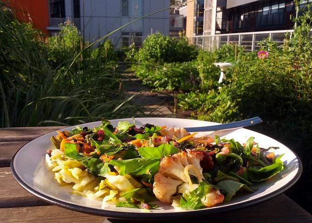 Garden Fresh Dinner