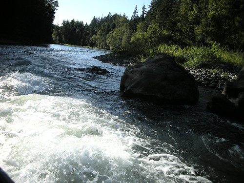Middle Fork Willamette Scenery