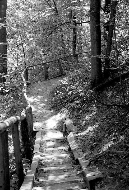 Twisted Path 1