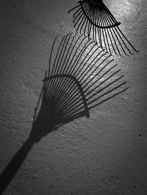 Rake shadow