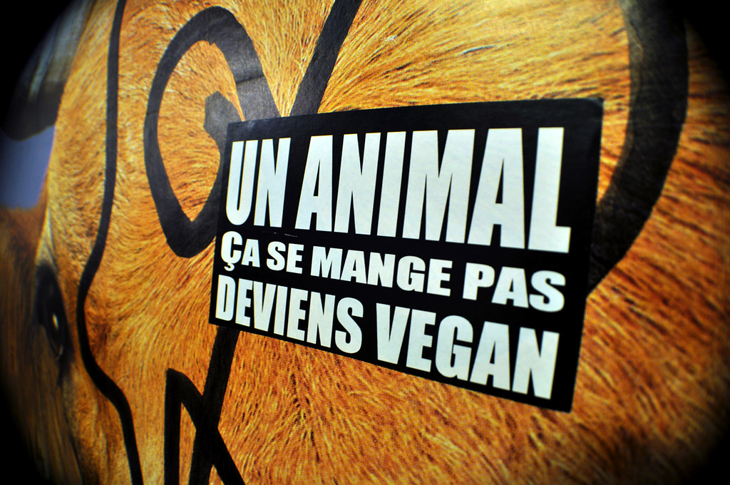 Un ANIMAL Ça Se Mange Pas Deviens VEGAN