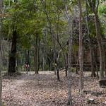 08 Kampong Thom 03