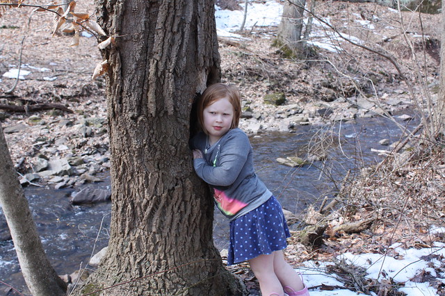 Finding a geocache in the hollow of a tree