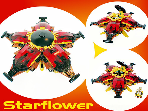 The-Star-Flower