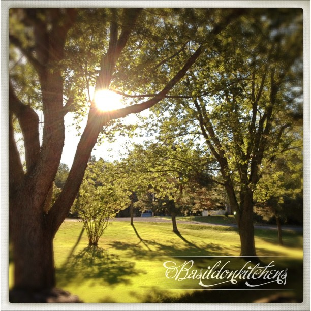 Sep 8 - might {after a rainy day yesterday, it looks like it might be a beautiful day today}  #TitleFx #photoaday #princeedwardcounty #morning #sunrise