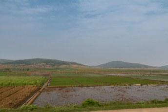 Terug naar Pyongyang passeerden we wederom de eindeloze rijstvelden. Er stond steevast een man in uniform de arbeiders te 'coachen'.