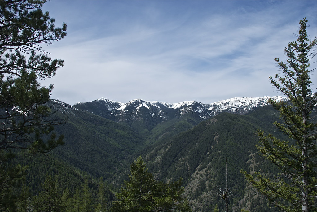 Cherry Peaks