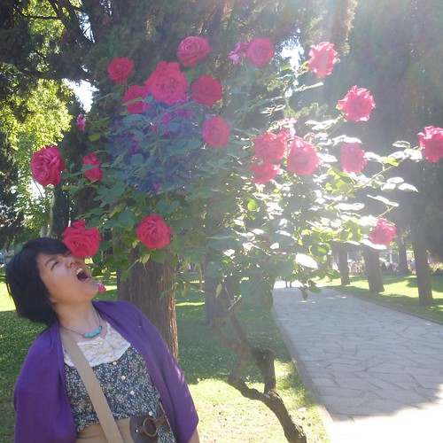 Attack of the Topkapi Palace roses
