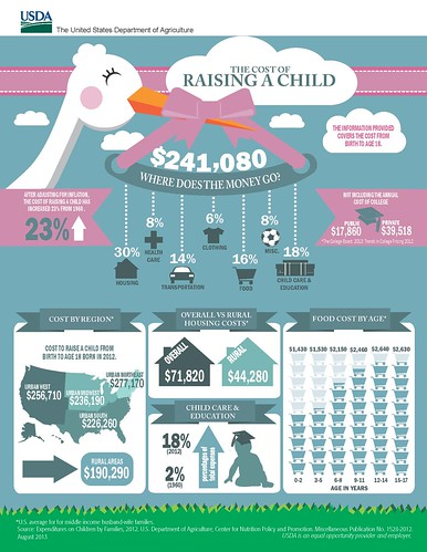 The U.S. Department of Agriculture's  (USDA) annual report on the Expenditures on Children by Families has found that a middle-income family with a child born in 2012 can expect to spend about $241,080 for food, shelter, and other necessities associated with child rearing expenses over the next 17 years.