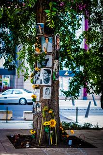 Michael Jackson Memorial Tree, Budapest, Hungary