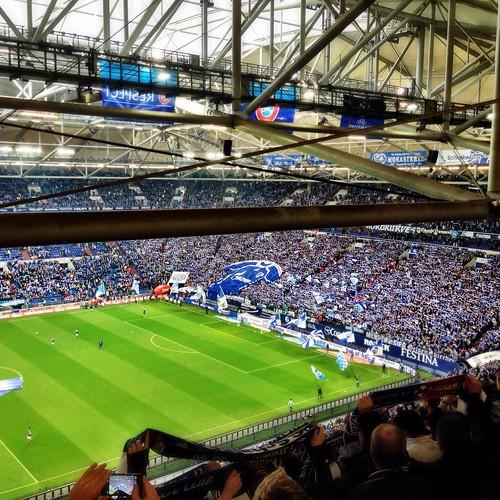 Auf Schalke by SpatzMe