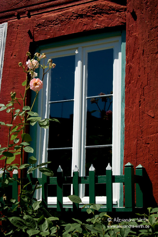 Fenster by Alexandra Wirth
