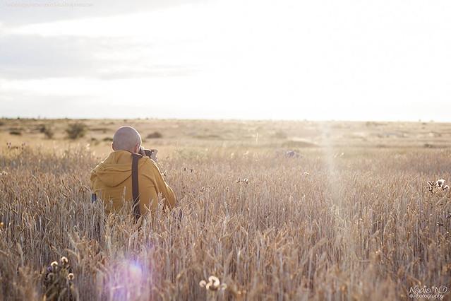 Pozondón entre campos #7