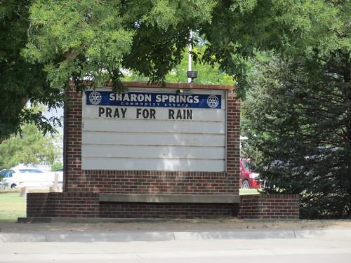 Z Crew: Pray for Rain