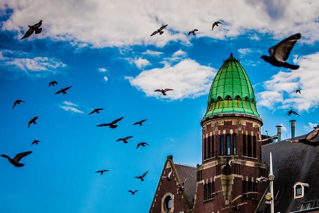 AmsterdamArchitecture3.jpg