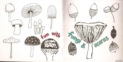 fun with fungi and acorns