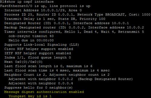 OSPF-INT-3