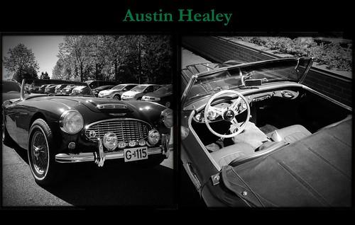 Austin Healey by Davidap2009