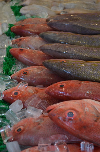 Maine Ave Fish Market