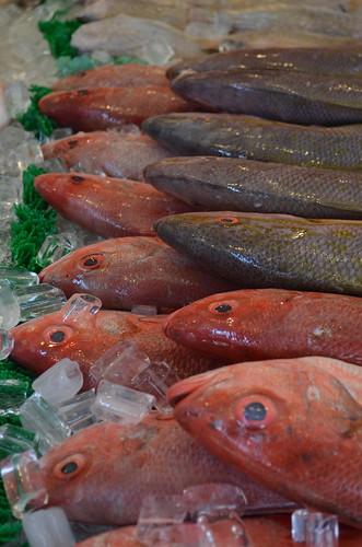 Maine Ave Fish Market