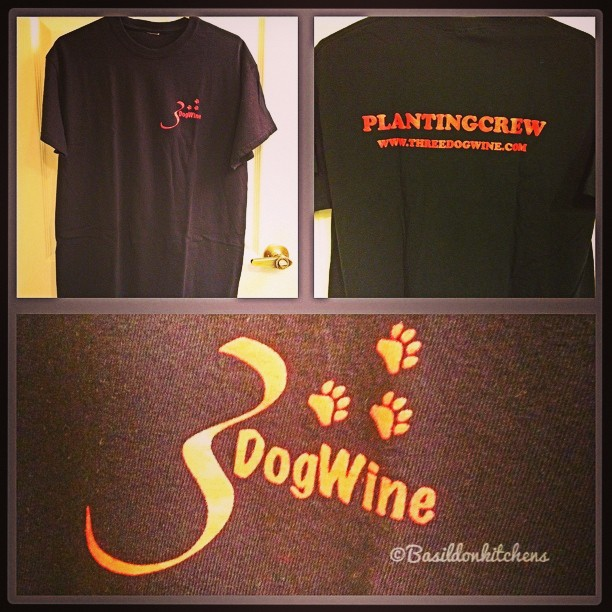 "Sep 9 - got the t-shirt {received this @ 3 Dog Winery's planting party} The back says ""planting crew"" #photoaday #tshirt #3dogwinery #3dogdig #threedogdig #winery #princeedwardcounty"