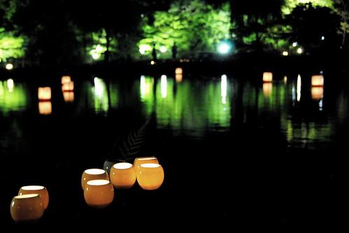 Tokugawaen Lightup 063r