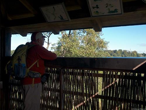 Birdwatching Farum Sø