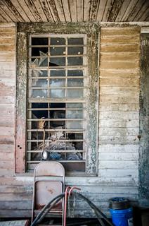 Timmerman Store Window
