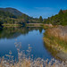 GlenEllen Lake Mike-Hope