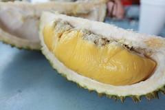 Musang King durian I