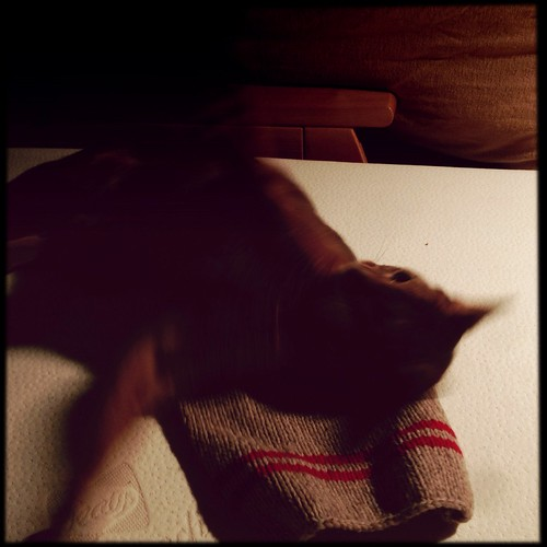hipstajakesweater1